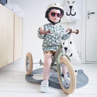 Trybike - laufrad und Dreirad in Einem